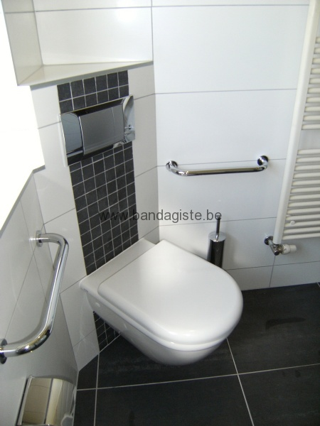 Am nagement toilette pour personne pr sentant un handicap toilette sur mesure for Amenagement toilette